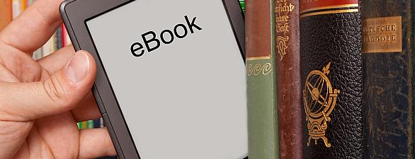 E-Book_Fotolia_41302161_L_Markus_Bormann.jpg.1339658